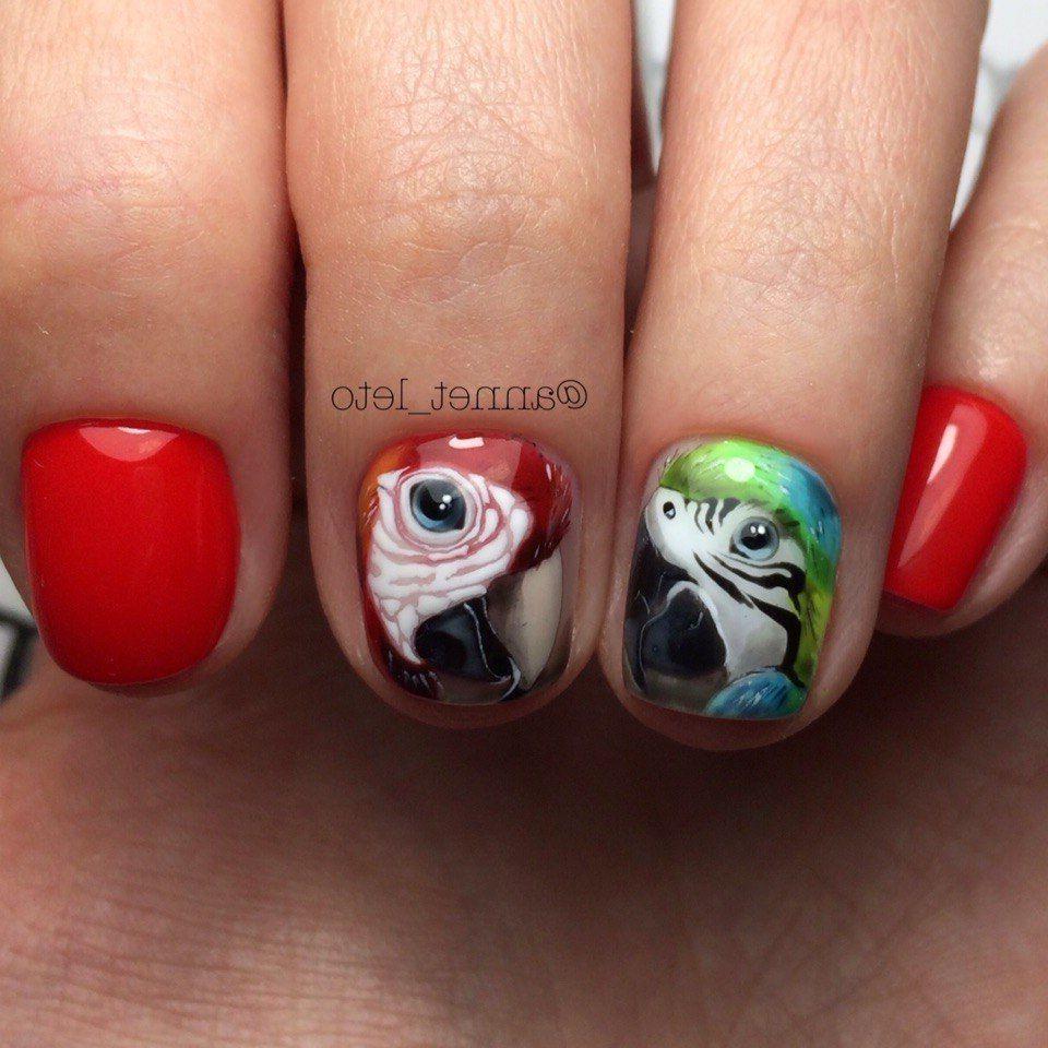 Художественная роспись попугаи