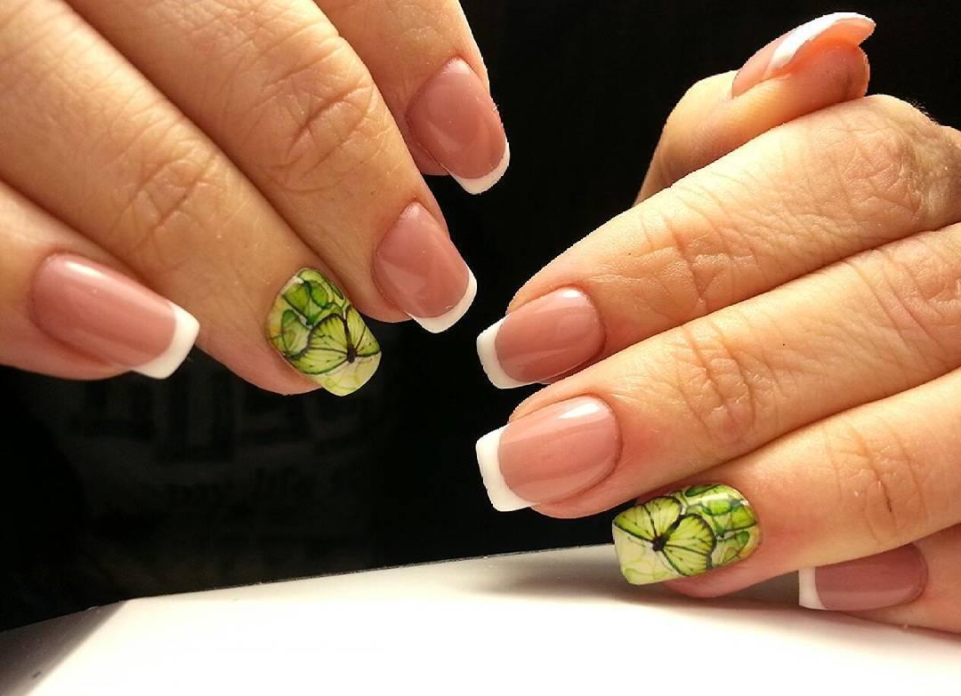 Красивая зеленая бабочка с френчем