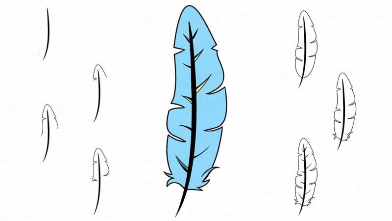 схема как нарисоватьперо на ногтях поэтапно